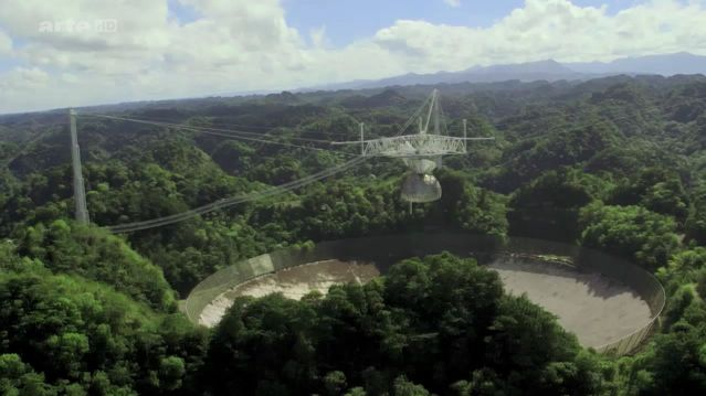 arecibo un telescope dans la jungle