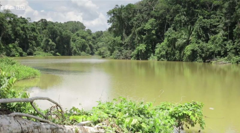 forets inexplorees de l amazonie peruviennee