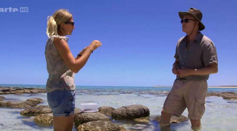 entre terre et ciel australie histoire de la vie sur terre